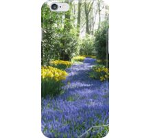 River of Blue - Flower Lane in the Keukenhof Gardens iPhone Case/Skin