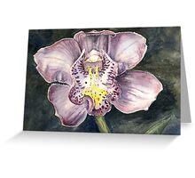 Cym Orchid Greeting Card
