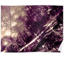 Sun Print No.1 Violet Reflections Poster