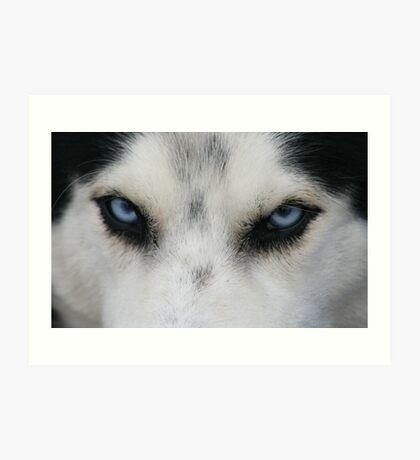 I got My Eye on You! Art Print