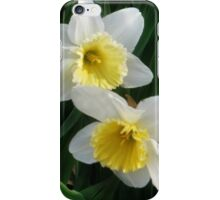 Daffodil Duet iPhone Case/Skin