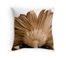 When All Is Said And Done Throw Pillow