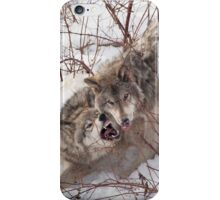Timber Wolves Fighting iPhone Case/Skin