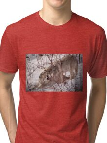 Timber Wolves Fighting Tri-blend T-Shirt
