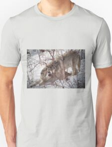 Timber Wolves Fighting T-Shirt