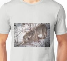 Timber Wolves Fighting Unisex T-Shirt
