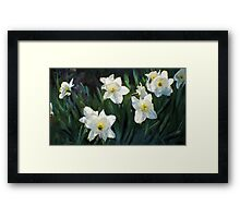 7 ABSTRACT DAFFODILS Framed Print