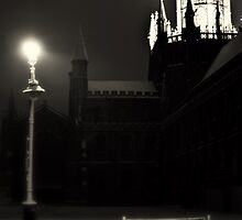 winter night at the cathedral  by shaun pearce