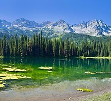 Island Lake Panorama - British Columbia by Yannik Hay