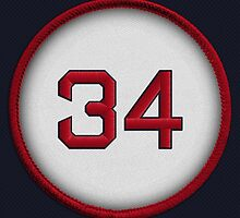 34 - Big Papi (on blue) by DesignSyndicate