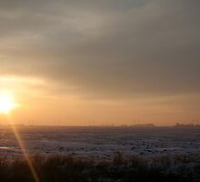 Sun Beaming The Snow Away by Stephen Thomas
