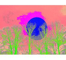 Blue Pink Moon Tree Photographic Print