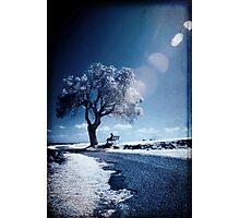 Dreams Of Reason Photographic Print