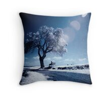 Dreams Of Reason Throw Pillow