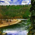 Lehigh River at Glen Onoko  by Devon Mallison