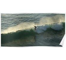 Surfer #1 Poster