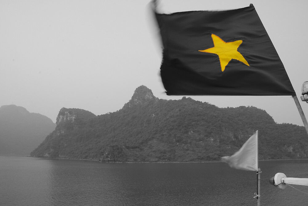 Vietnamese Flag by fritsswanepoel