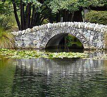 Botanical Gardens Bridge by Jude Glenn