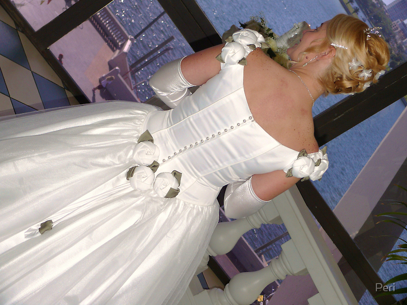 The Wedding Dress by Peri