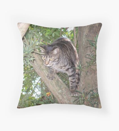 """Jeth-ee-ro"" Throw Pillow"