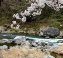 Sakura in Mt. Mitake Valley Sticker