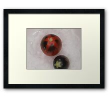 End of season #3 last tomato Framed Print