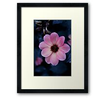 Trouvaille Framed Print