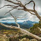 Cresta Valley - Mt Buffalo by Mark  Lucey