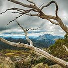 Cresta Valley - Mt Buffalo by Mark  Lucey
