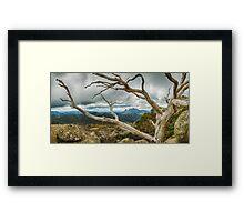 Cresta Valley - Mt Buffalo Framed Print