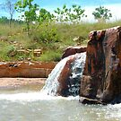 Soda Creek by mickmci