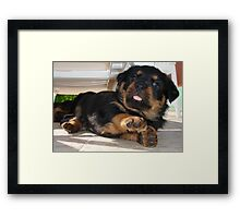 Oops Up Side Your Head ...I Said Oops Up Side Your Head Framed Print