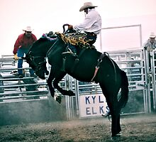saddle bronc by Heath Dreger