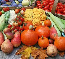 Summer Harvest by mistyrose