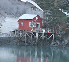 Halibut Cove, Alaska by ChelseaHorn