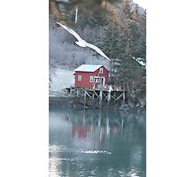 Halibut Cove, Alaska Photographic Print