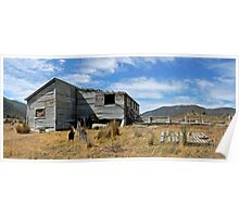 Outback Shearing Shed  Poster