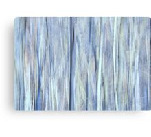 Can't see the forest for the trees... Canvas Print