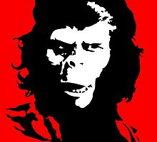 Planet of the apes Evolution by monsterplanet