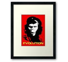 Planet of the apes Evolution Framed Print