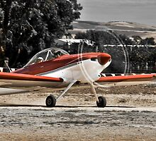 Plane at Aldinga Airport by Morgan Smith