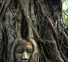 Thailand by Adew