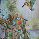 KINGFISHER FEEDING HER FLEDGINGS by Marilyn Grimble