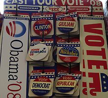 Vote for your next President 2008. by Sandy  Tyler