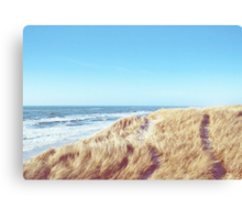 ◇ WIDE AND FREE Canvas Print