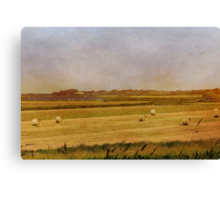 Hay Rolls, Beganne, France #2 Canvas Print