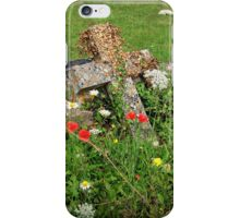 It Is Not Spring For Everyone iPhone Case/Skin