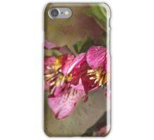 Easter Rose iPhone Case/Skin