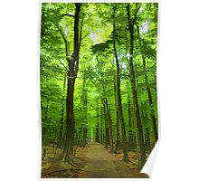 Green Light Harmony - Walking Through The Summer Forest Poster