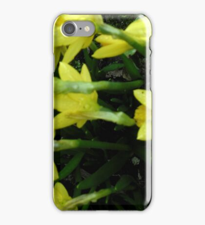 A Touch of Spring iPhone Case/Skin